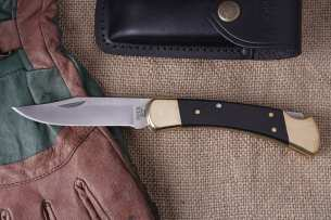 Buck Folding Hunter 0110BRS